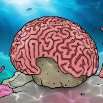 Hersenkoraal
