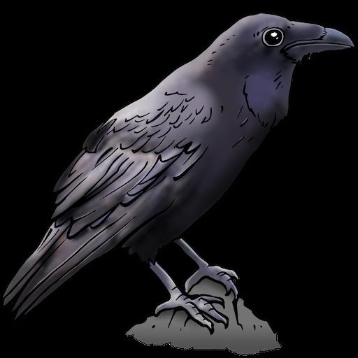 Raven net zo slim als mensapen